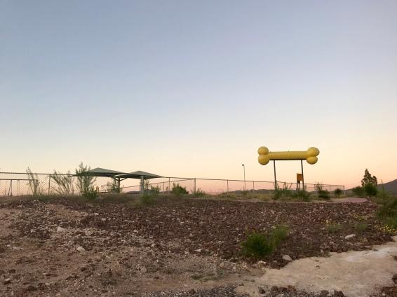Approaching dog park/children's playground